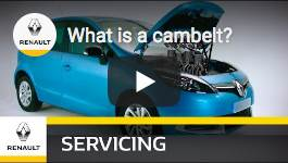 What is a Cambelt?